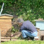 Removing Entrance Reducer On Swarming Hive